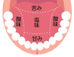 味覚障害の症状・原因について - 【公式】横幕鍼灸院